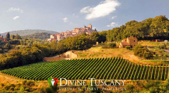 Wine estate for sale near Pienza